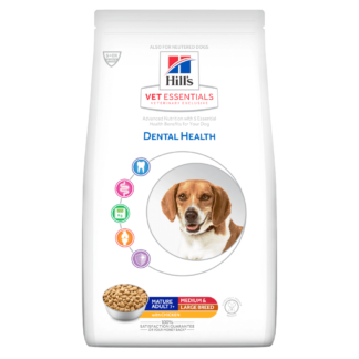 Dental health mature adult chicken