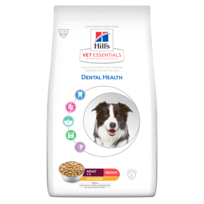 Dental health medium chicken
