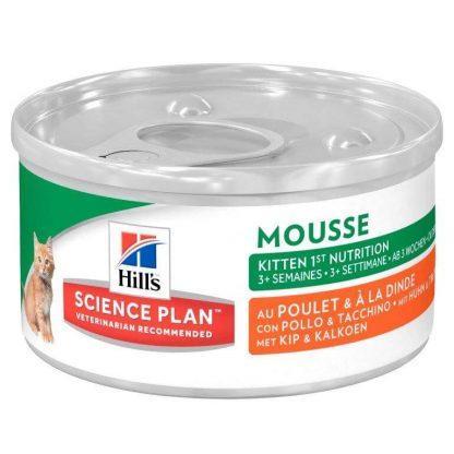 Kitten Mouse (1)