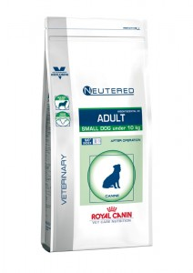Adult Small Dog - Weight & Dental