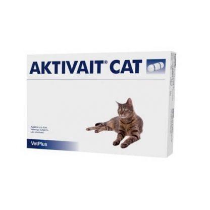 Aktivait Cat - hersenveroudering