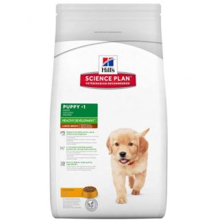Puppy healthy development large breed chicken
